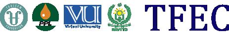 TF VTI Logo